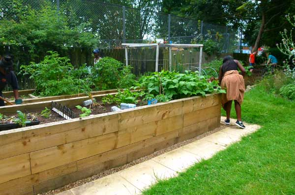 Wendelsworth Community Garden