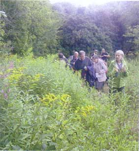Investigating bumblebees at a field meeting led by naturalist Fiona Barclay